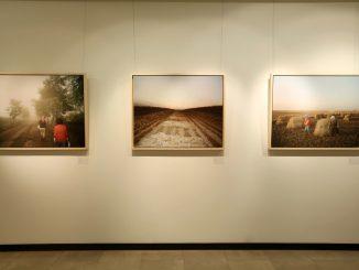 ボッテガ・ヴェネタ、上海で「Critical Landscapes」展を開催